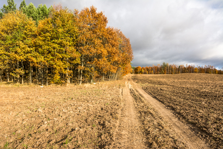 Country road through farm land and plowed field in autumn, landscape