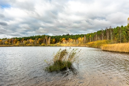 Lake landscape in autumn, cloudy weather