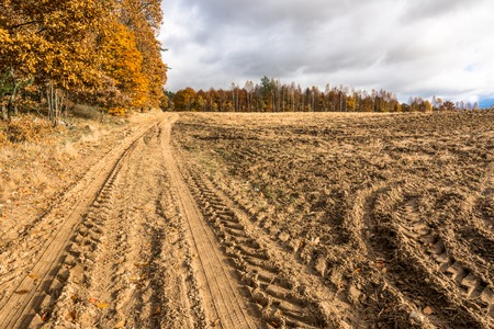 Agricultural road through field in autumn, landscape with plowed land, stubble and forest with yellow trees, polish countryside scenery Stock Photo