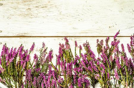 Heather bloemen, herfst achtergrond, shabby chic frame