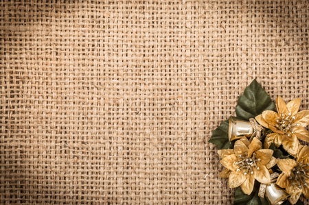 Christmas background with poinsettia flower, copy space