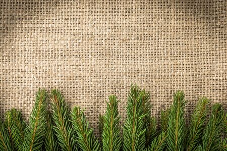 Green christmas tree branch on rustic background Stok Fotoğraf