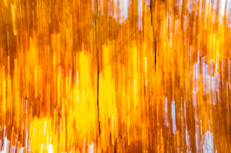 Natural autumn wallpaper with abstract blurry background Reklamní fotografie