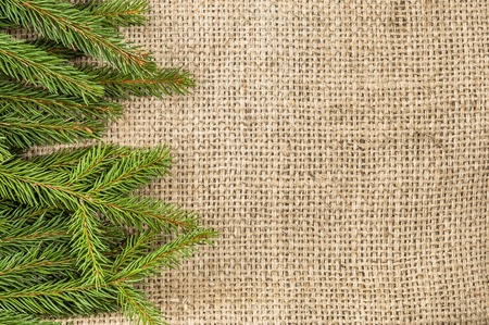 Green fir tree, christmas background, empty space for text Stok Fotoğraf