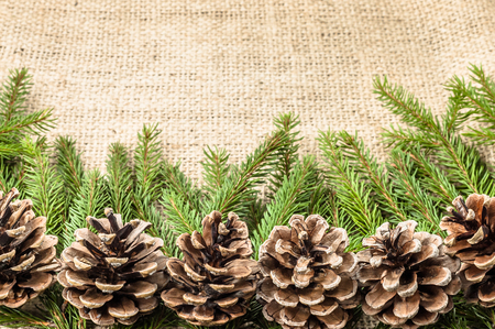 Green christmas tree branch with pine cones on rustic background Stock fotó