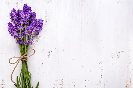 Fresh flowers of lavender bouquet, top view on white wooden background Stockfoto