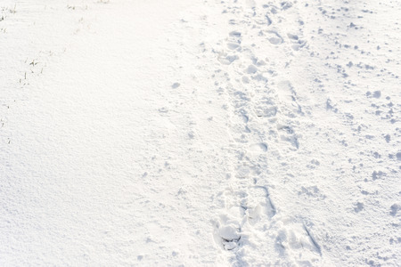 Footprints in snow, winter background Stock Photo