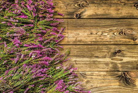 Heather flowers, autumn background, floral frame Фото со стока - 87786255