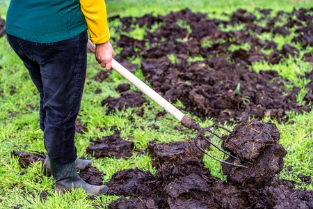 Farmer working on farm. Organic fertilizer for manuring soil, preparing garden for planting in spring, bio farming concept.