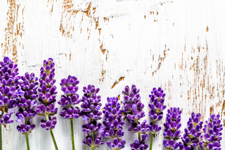 Frame with lavender flowers on white wooden background, overhead