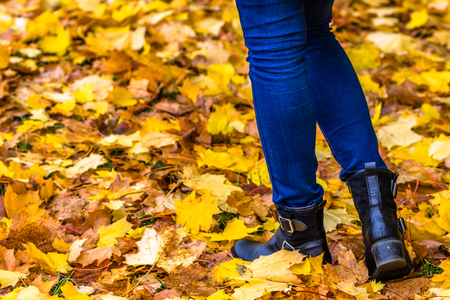 Female shoes for autumn, fashion for woman, legs in shoes walking in leaves at fall Reklamní fotografie