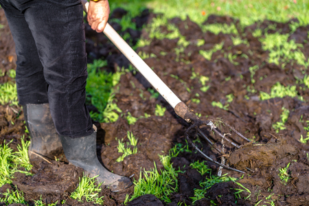 Farmer working in the garden in spring. Fertilization of the grass field, organic farming concept Stock Photo