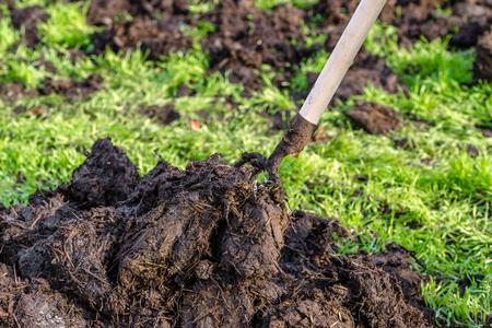 Hoop van mest in de de lentetuin, organisch de landbouwconcept