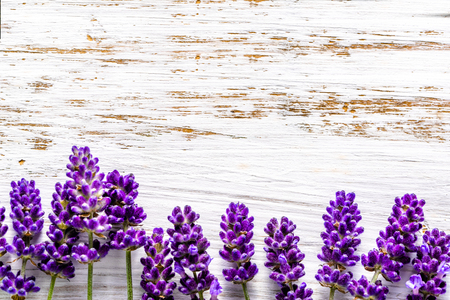 Lavender flowers frame on white wooden background, overhead Stock Photo