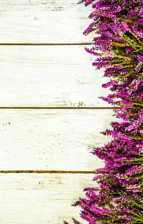 Heather flowers, autumn background, shabby chic frame