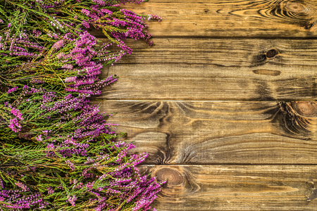 Heather flowers, autumn background, floral frame