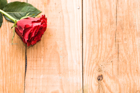 Red rose on wooden background, valentines day card template Stock Photo