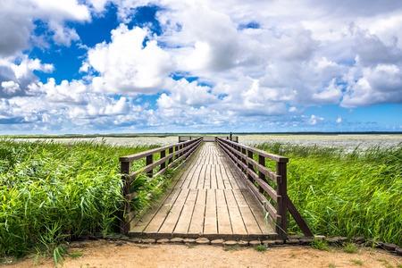 湖に架かる木製の橋、青と雲の緑の春の草と空のパノラマの景色 写真素材