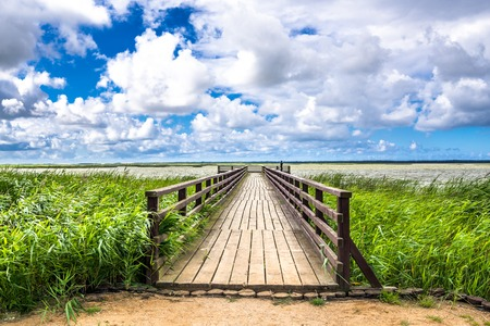 Wooden bridge over lake, panoramic vista of green spring grass and sky with blue and clouds 写真素材