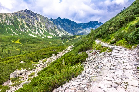 Stone path in mountains, landscape of hiking trail over green valley with forest and mountain range in the sky