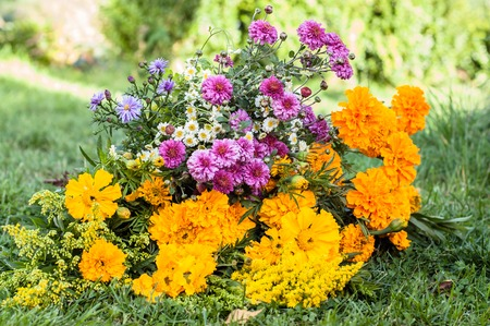 Autumn flowers bouquet. Aster and marigold.