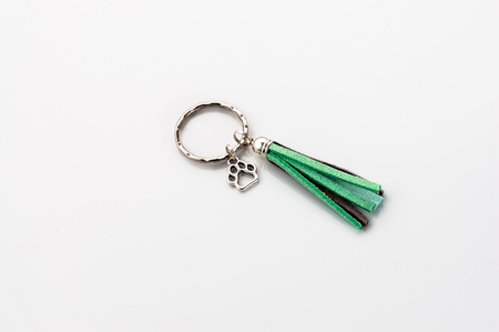 Key ring isolated on a white background
