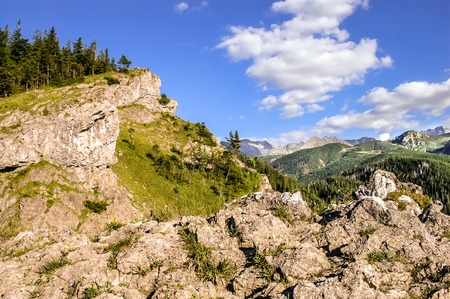 Tatra Mountains view, forest and mountain rocks