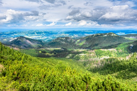 Green hills in Mountains, landscape, vista on valley in Carpathians, Poland