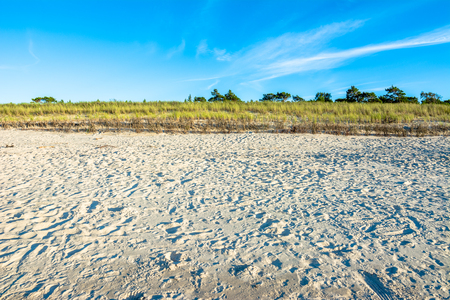 Sandy beach under blue sky, summer background