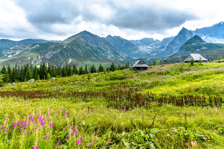 Idyllic mountain land with countryside scene, mountain hut in green valley, summer landscape Stock Photo
