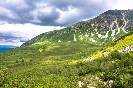 Green mountains, panoramic landscape of forest in mountain scenery Stock Photo