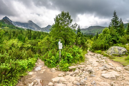 Landscape of mountain trails in nature, path in green mountains scenery