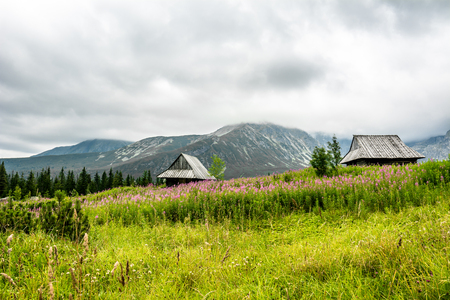Wooden houses in mountains, landscape of mountain valley Hala Gasienicowa, popular tourist attraction in Tatra National Park, Poland Stock Photo