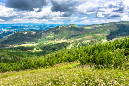 Landscape of mountain valley, panorama of city Zakopane from the hiking trail in Tatra Mountains, summer, Poland