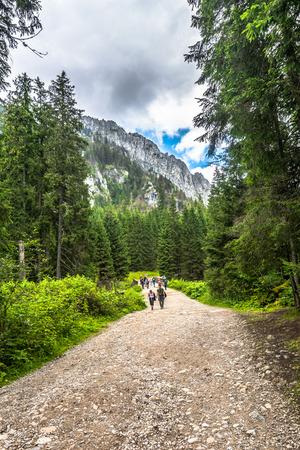 ZAKOPANE, POLAND - AUGUST 15, 2016: Mountain hikers on hiking trail in Tatra Mountains, tourism in Poland