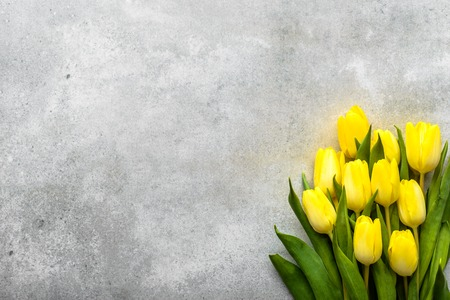 Yellow tulips, spring easter background for womens day or card for mothers day with flowers