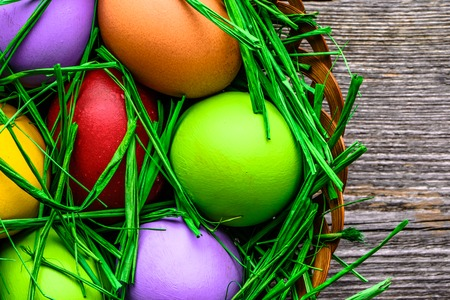Spring easter eggs in grass, nest with eggs, festive background Reklamní fotografie