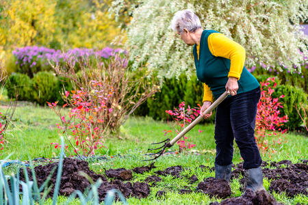 Woman working in the garden or farmer fertilizing the soil with a natural fertilizer, organic farming concept