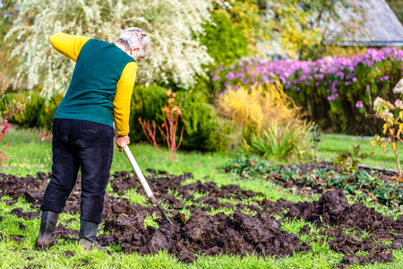 Farmer in the garden or gardener working on farm. Fertilizing the soil with a natural fertilizer, organic farming concept