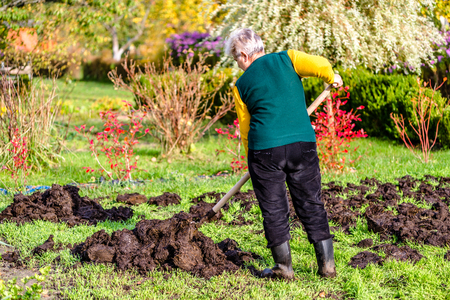 Person in the garden, worker of farm fertilizing the soil with a natural fertilizer, organic farming concept Stock Photo