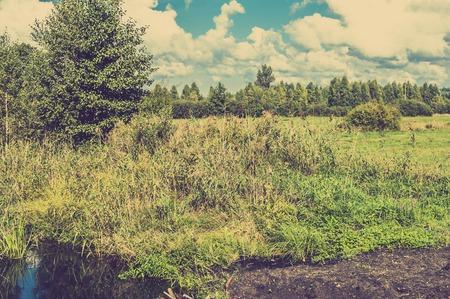 Rural landscape of pasture on wetlands with pond and forest, vintage photo. Imagens