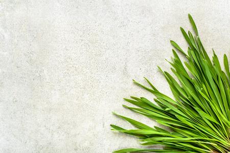 新鮮な緑の小麦草、デトックススーパーフードコンセプト 写真素材
