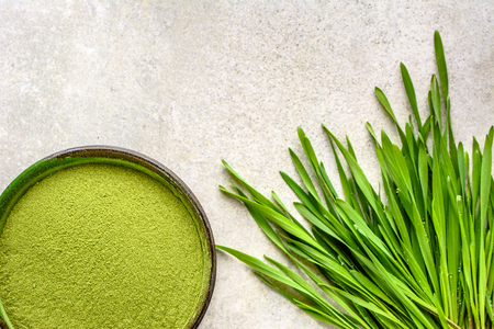 Green superfood detox - barley grass powder and sprouts, vegetarian diet and healthy lifestyle concept