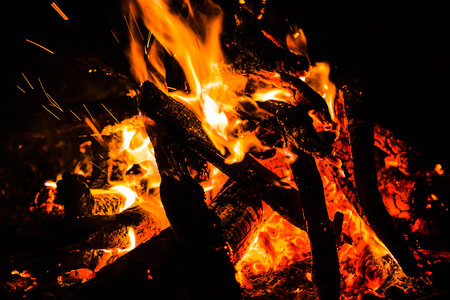 Night bonfire in nature. Burning wood in camp fire, red flames on black background.