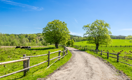 Countryside landscape with rural road and blue sky Stock fotó