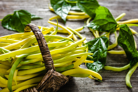 Yellow bean pods, organic vegetables. Farm fresh beans in the basket on wooden table. Reklamní fotografie