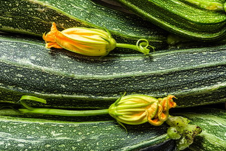 Fresh zucchini, organic vegetables background. Green vegetable market with zucchini or courgette with flowers. Imagens