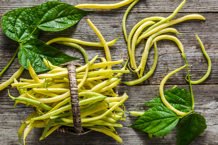 Yellow bean, organic vegetables on farmer market, freshly harvested beans on wooden background
