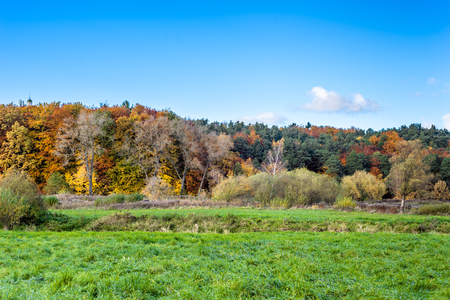 Panoramic vista of forest in autumn, scenic landscape with green field and blue sky