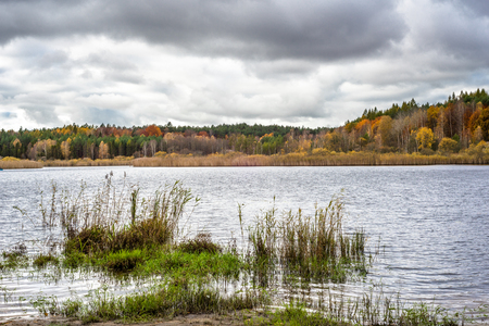 Autumn forest over lake, autumn landscape with colorful trees and cloudy sky